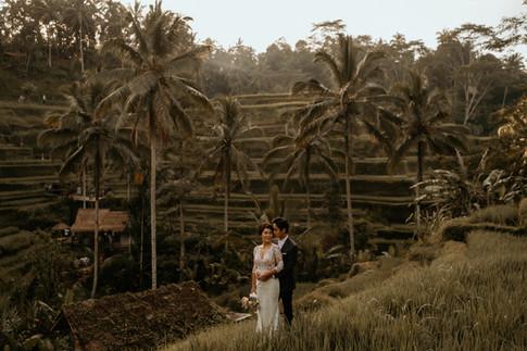 Tegalalang Ricefield-31.jpg