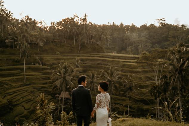 Tegalalang Ricefield-1.jpg