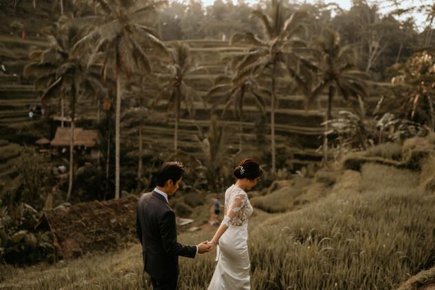 Tegalalang Ricefield-30.jpg