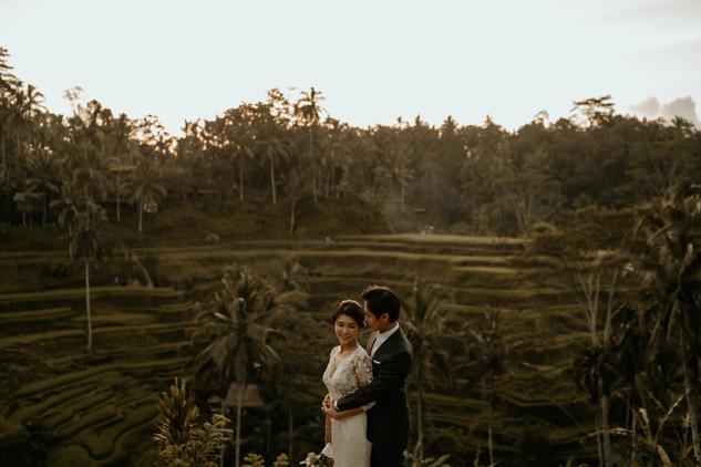 Tegalalang Ricefield-2.jpg