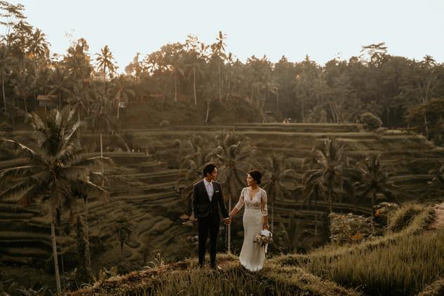 Tegalalang Ricefield-19.jpg