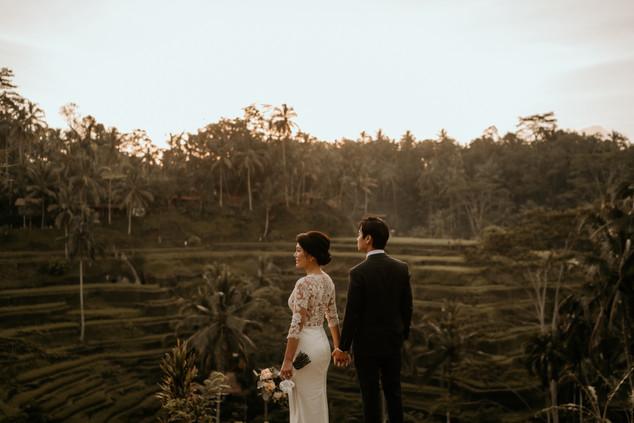 Tegalalang Ricefield-10.jpg