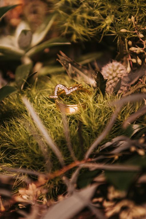 Scotify-Studios-Wedding-Photography-Madison-Wisconsin-bb-2.jpg