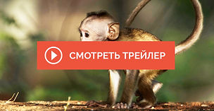 Monkey-Island-2.jpg