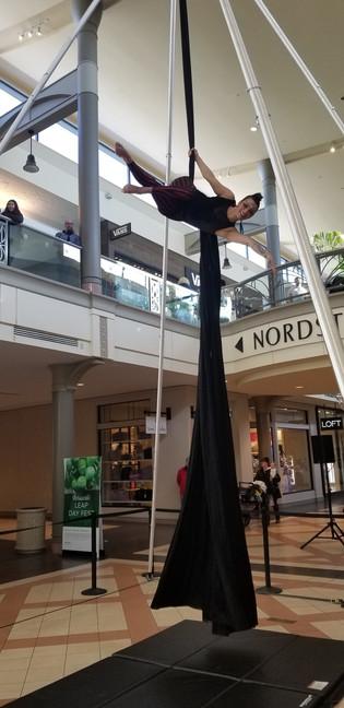 Aerialist at Mayfair Mall.jpg