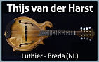 Thijs-Luthier.jpg
