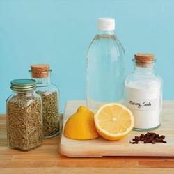 Detoxification of the Body & Home