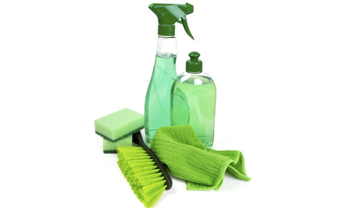 GREEN House Cleaning (1 DAY)