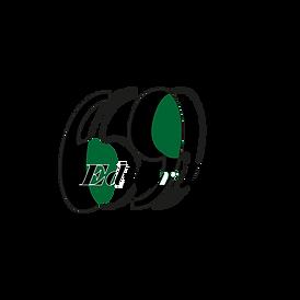 Rebrandinglogoeditor_Tavola disegno 1.png