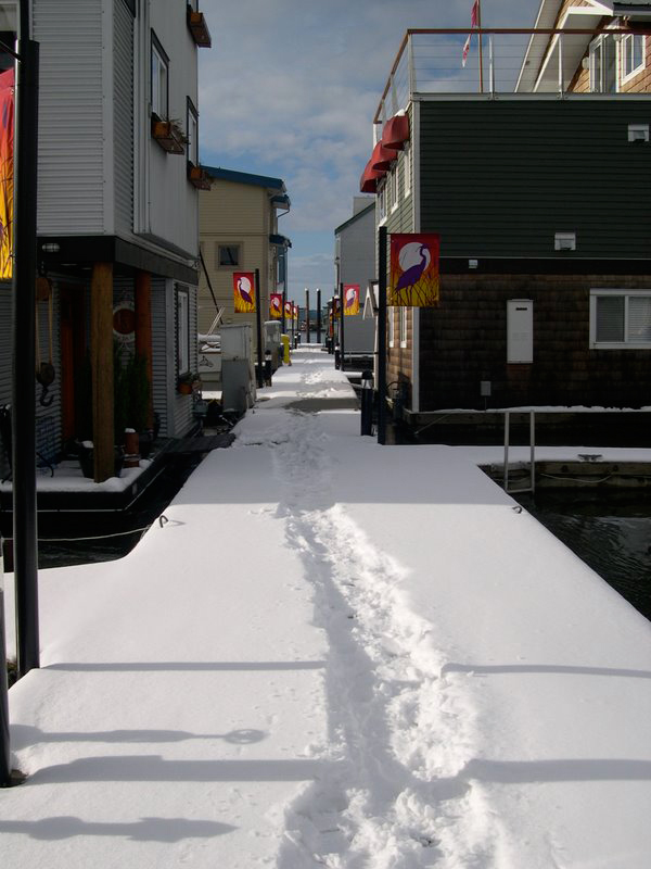 Snow on North Dock