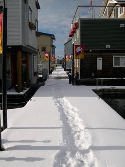 Snow on North Dock