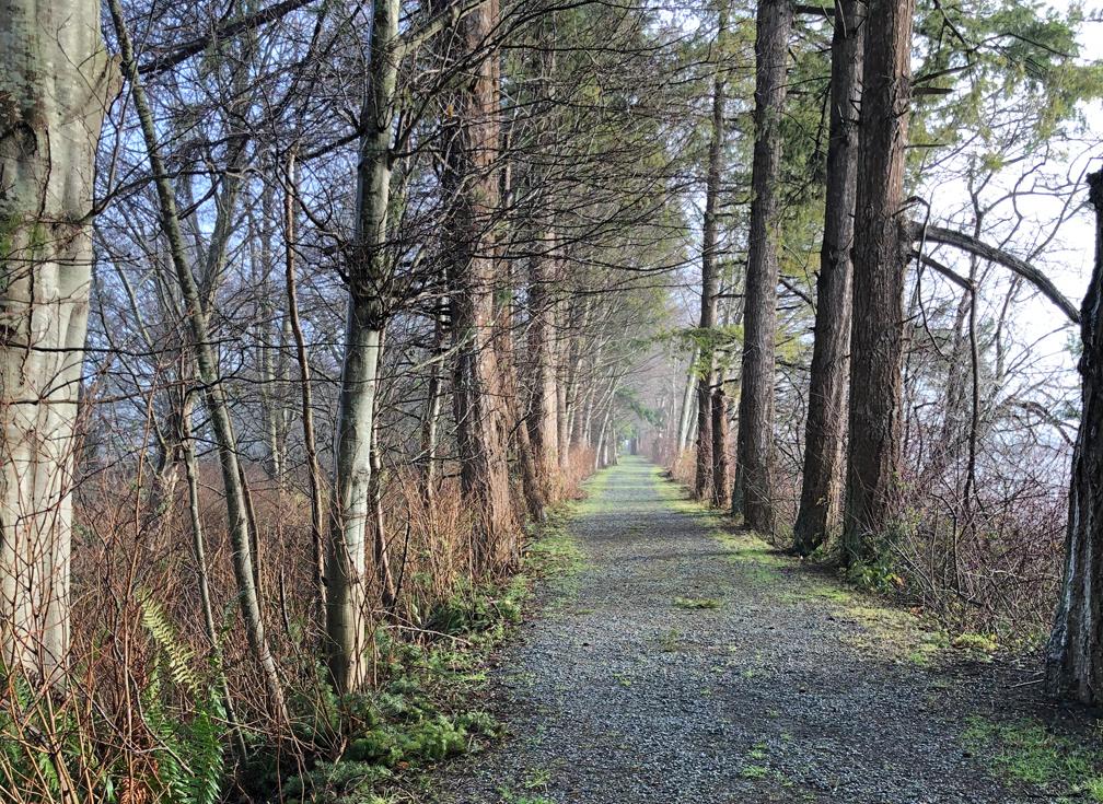 Westham Island Walk