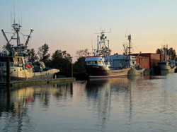 Ladner Reach Fish Boats