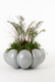 Nola planter.jpg