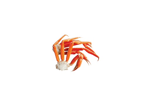 Crabe des neiges 7 LBS