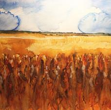 Wheat Field, Morning