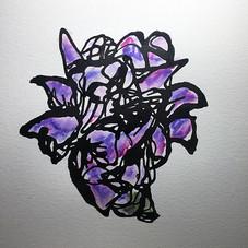 Lilly, purple