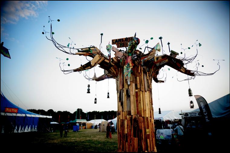 LARMER TREE 2015