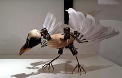 Dolls film Albino crows