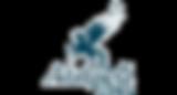 дно, музей первой дивизии народного ополчения, музей 1 дно, музей первой дно, музей московской первой дивизии народного ополчения, ополчение