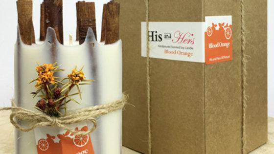Blood Orange with Cinnamon bark stick