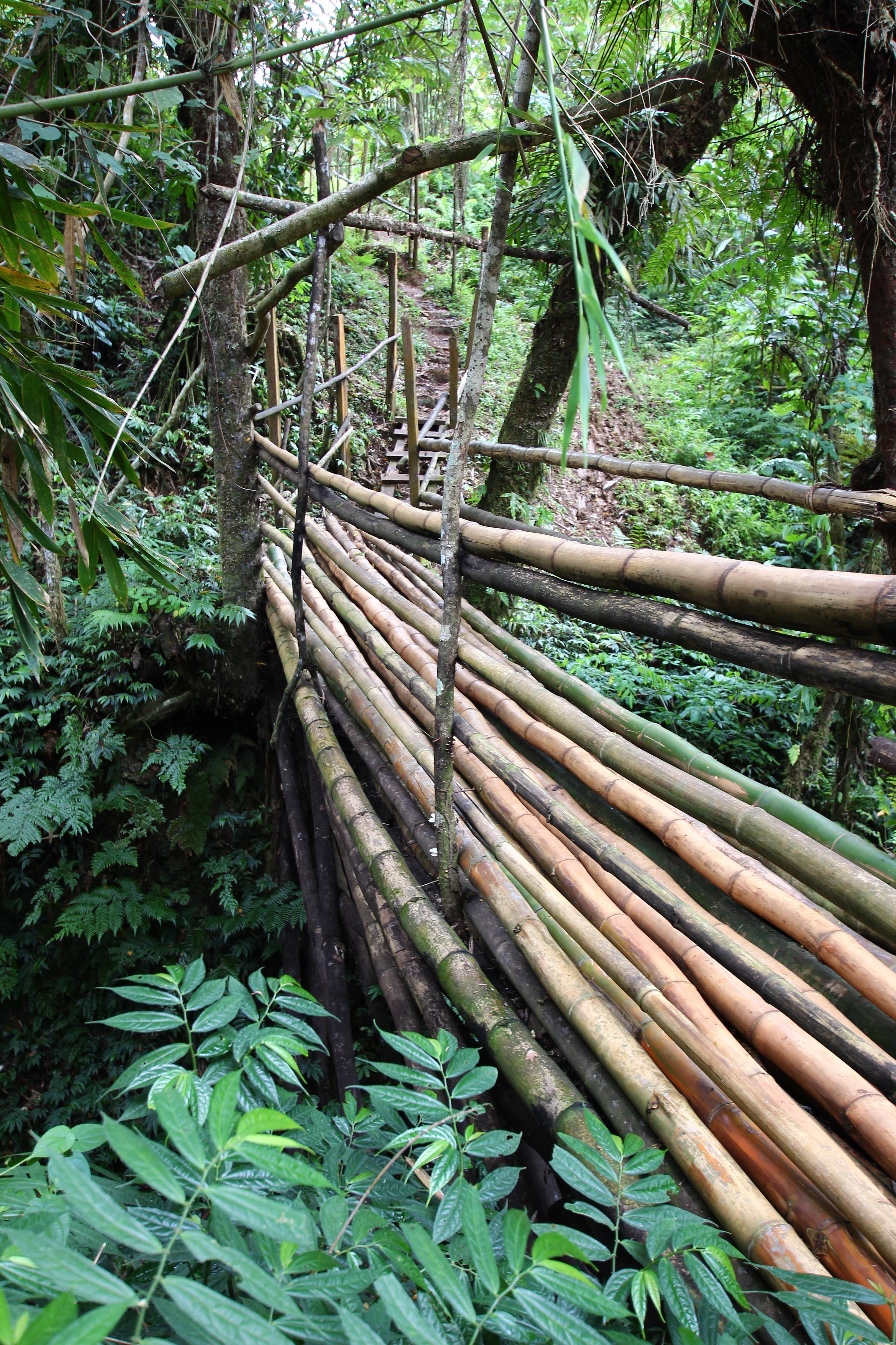 Bambus Brücke _ Millenium Cave