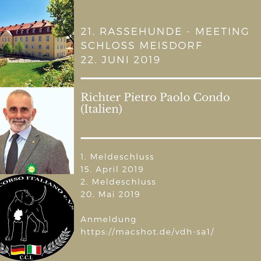 Sonderschauen 21. Rassehunde-Meeting Schloss Meisdorf 2019