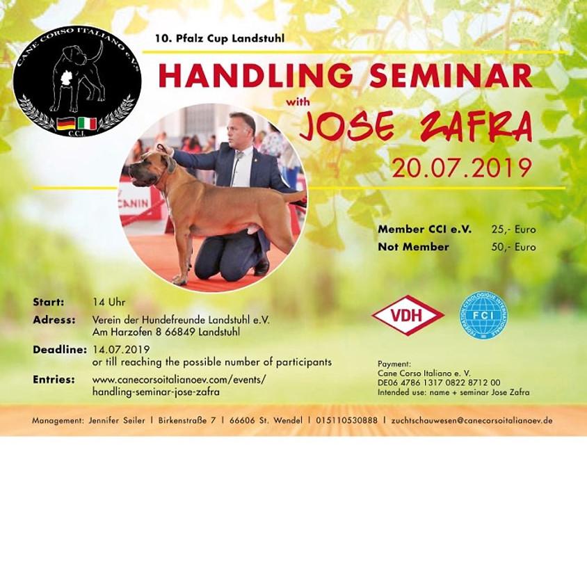 Handling Seminar Jose Zafra