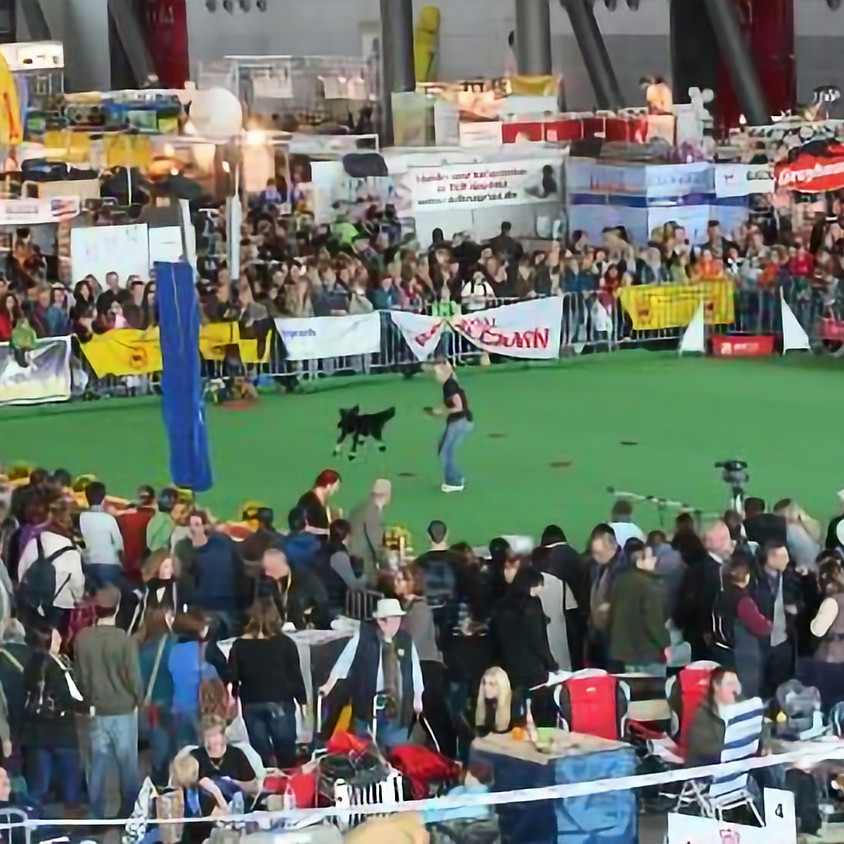 Internationale Ausstellung Offenburg
