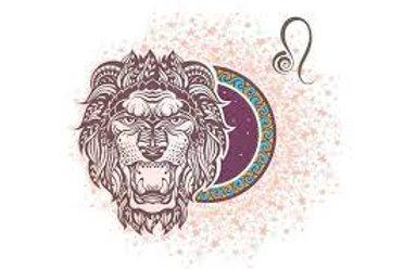 6o dia meditação de leão