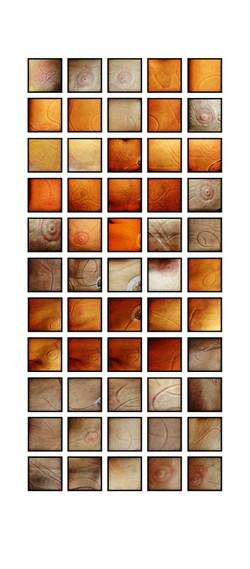 Pictographs_1-55