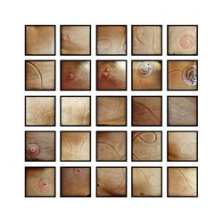 Pictographs_76-100