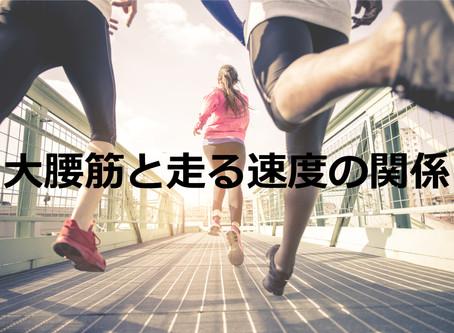 大腰筋と走る速度の関係(2020年6月)