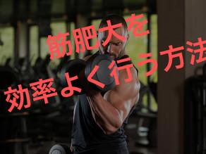 筋肥大を効果的に行うトレーニング方法!!あなたの筋肉は必ず成長する(2021年2月)