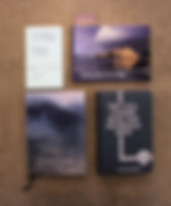 Denmark WA books