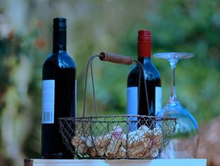 Vinho seco e vinho suave, qual a diferença?