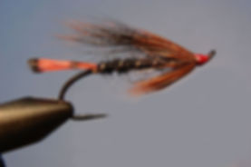 Brown Tippet