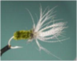 Reverse Spider, Olive