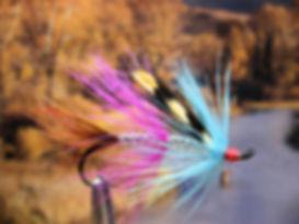 Wilkinson Shrimp (Light)