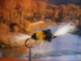 Bumble Bee Bomber