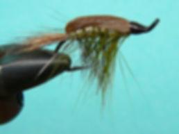 Horner Shrimp