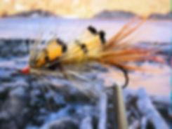 Tippet Badger Shrimp