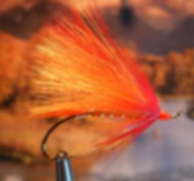 Winter Orange (Combs Winter Series)