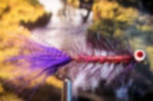 Purple Dredger