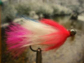 Parakeet, Pink and White