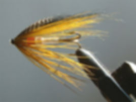 Golden Olive Spey