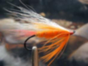 Polar Shrimp, Haas Style Wing