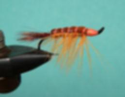 Bodega Bay Shrimp