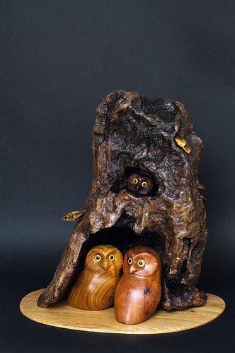 Une famille de six chouettes a élu domicile dans un arbre creux. Sculpture en bois de Christian Delacoux, h 51 cm.