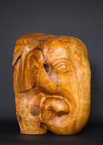 Tête d'éléphant d'Asie. Sculpture en cerisier de Christian Delacoux, h 50 cm.